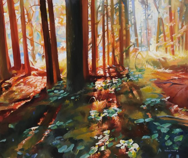 "Forest Light 24"" x 20"""