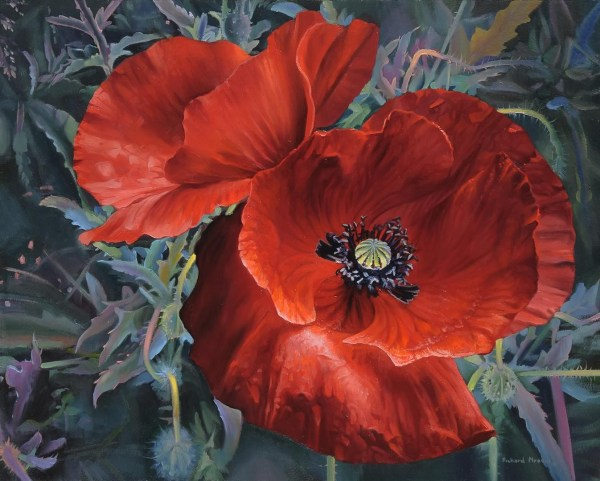 "Red Poppies 20"" x 16"""